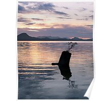 North Vancouver Island at Sunset Poster