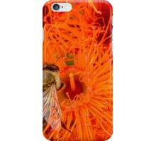 Honey Bee in the flowering gum flowers iPhone Case/Skin