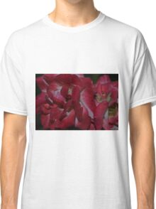 A close-up study in red rose petals Classic T-Shirt