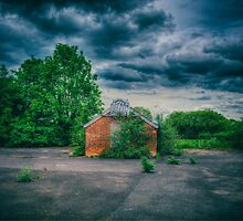 The Basketball Net by Nigel Bangert