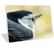 White-breasted Nuthatch (Sitta carolinensis) Laptop Skin