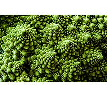 Vegan Victor - Broccoli Fractals 1. Photographic Print