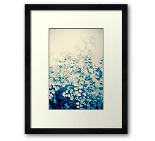 fern study Framed Print