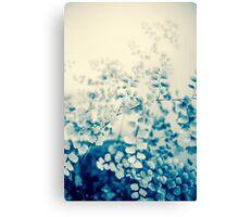 fern study Canvas Print