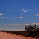 Crossing the Nullarbor Desert by myraj