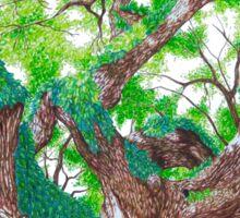 Angel Oak  Sticker
