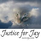 Justice for Jay by Lydia Marano