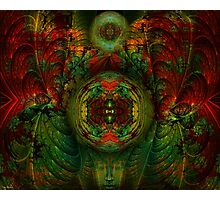 Enter The Enlightened Mind Photographic Print