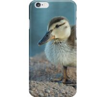 Spring Duckling iPhone Case/Skin