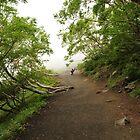 Walking Up Fuji Mnt by Christian Eccleston