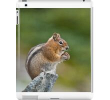 Golden Mantled Ground Squirrel Sitting on a Rock Eating iPad Case/Skin