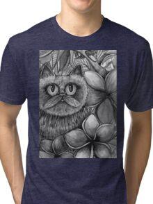 hay there big eyes Tri-blend T-Shirt
