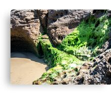 Sea Caves Canvas Print