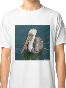 Brown Pelican With White Head Plumage Classic T-Shirt