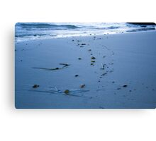 Trail into the Sea Canvas Print