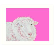 Merino sheep painting on hot pink Art Print
