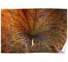 Deep leaf Poster