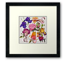 Floral and birds flamingos Love Graphic Design Framed Print