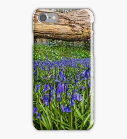 blue bell bood wales iPhone Case/Skin