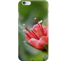 A bud blossoms iPhone Case/Skin