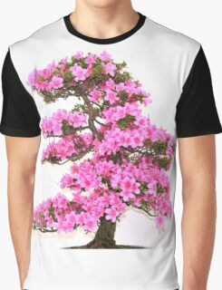 Bonzai Graphic T-Shirt