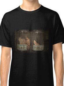 Autumn in Japan:  Ancient Remedies Classic T-Shirt
