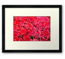 Fields of Fire Framed Print