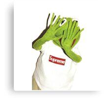 Kermit Photobomb Canvas Print