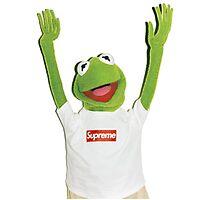Kermit Happy Photographic Print