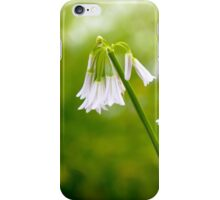 White petals on a day in spring iPhone Case/Skin