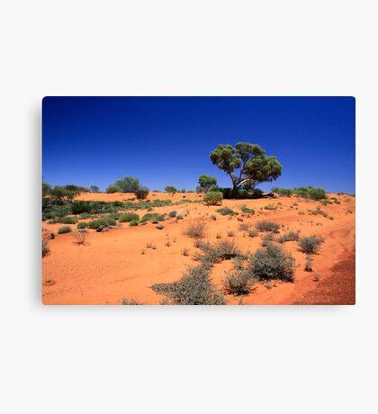 Desert1 Canvas Print