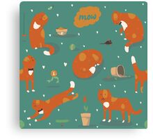 Ginger cats Canvas Print