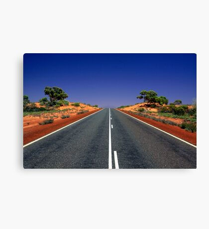 Desert Road Canvas Print
