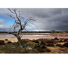Pink Lake Photographic Print