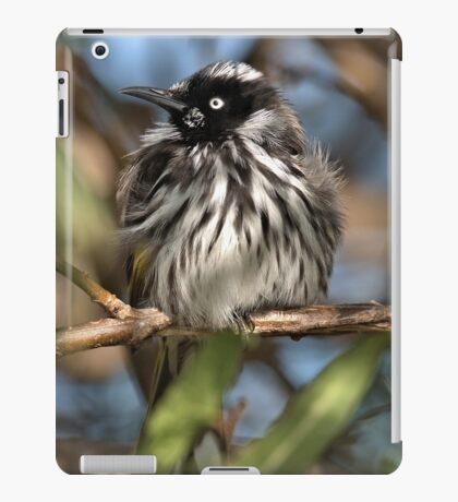 Fluffed up and alert iPad Case/Skin