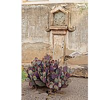 Nopal at Station Of The Cross Photographic Print