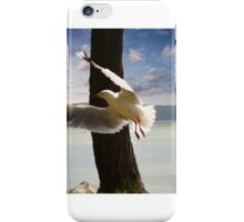 Seagull Soaring iPhone Case/Skin