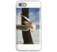 Seagull Soaring iPhone Case/Skin