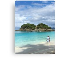 Caribbean Seascape  Canvas Print