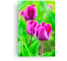 Purple Buds Of Tulips Canvas Print