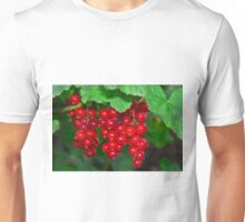 red currants Unisex T-Shirt