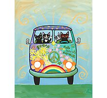 Hippie Cats Road Trip! Photographic Print