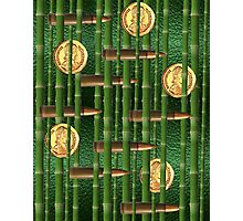Green Bamboo Bullet Coins Photographic Print
