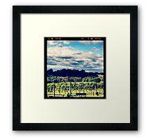 Where's the wine! Framed Print