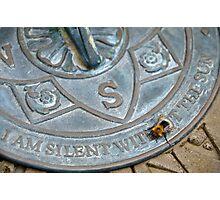 Bee on Sundial Photographic Print