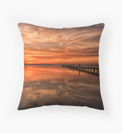Another Awesome Sunset Throw Pillow