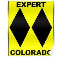 COLORADO DOUBLE BLACK DIAMOND SKIING SKI EXPERT ONLY Poster