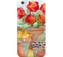 Sleeping Kittens and Geraniums iPhone Case/Skin