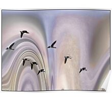Colors in a Borealis Flyway Poster