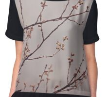 Before the Blossoms Women's Chiffon Top